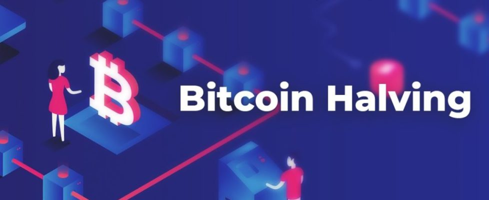what-is-bitcoin-halving-and-when-next-bitcoin-halving-occurs[1]